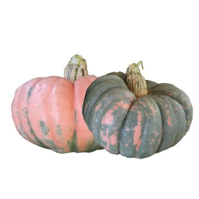 Rascal Pumpkin