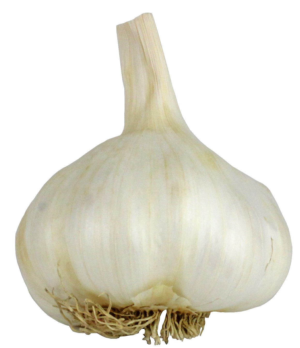 onions garlic shop h e b everyday low prices
