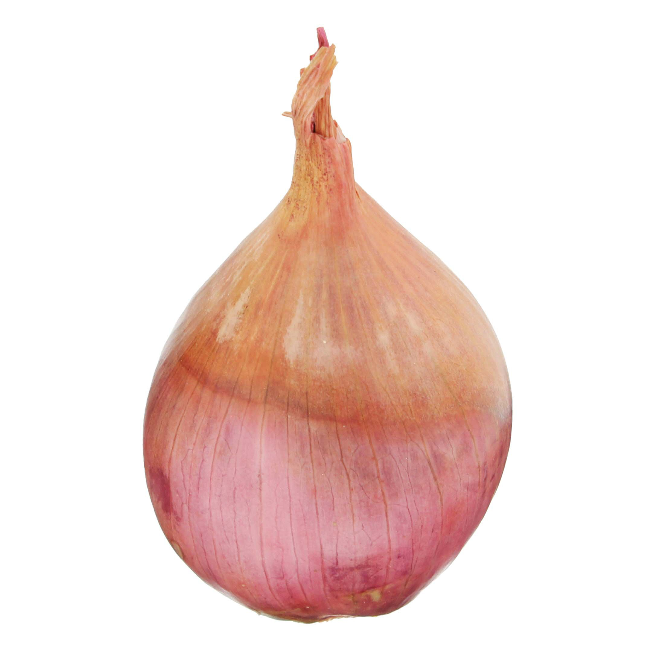 Fresh Shallots Shop Onions Garlic At H E B