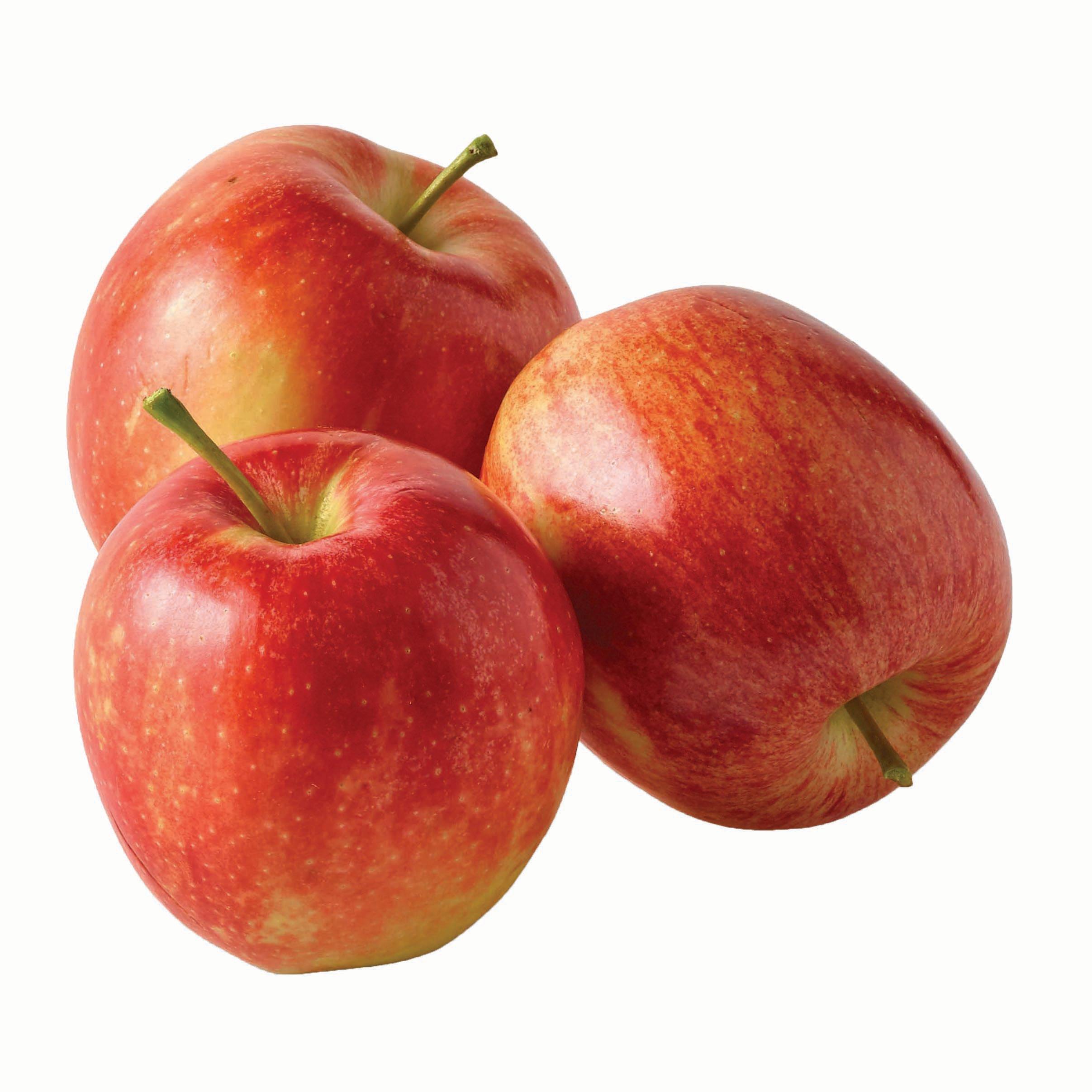 Fresh Gala Apples Shop Apples At H E B