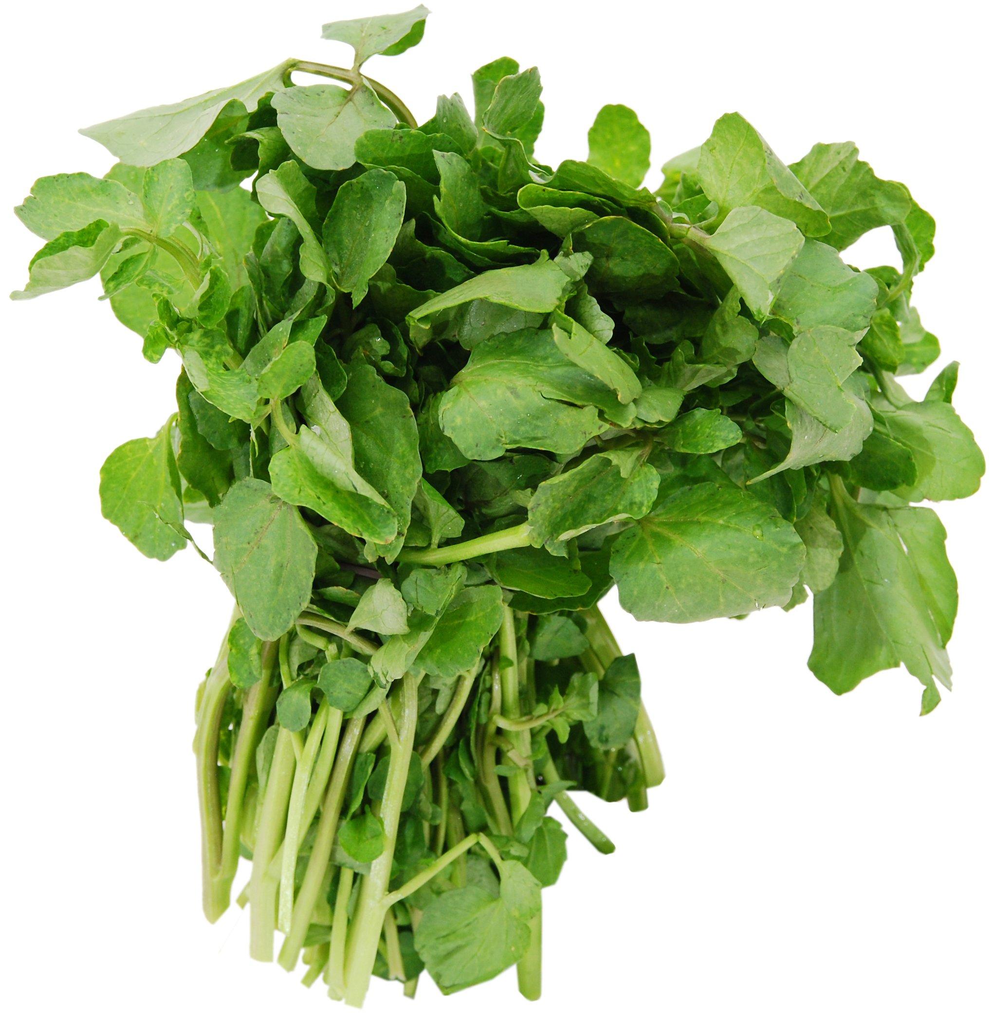 Fresh Watercress - Shop Lettuce & Leafy Greens at H-E-B