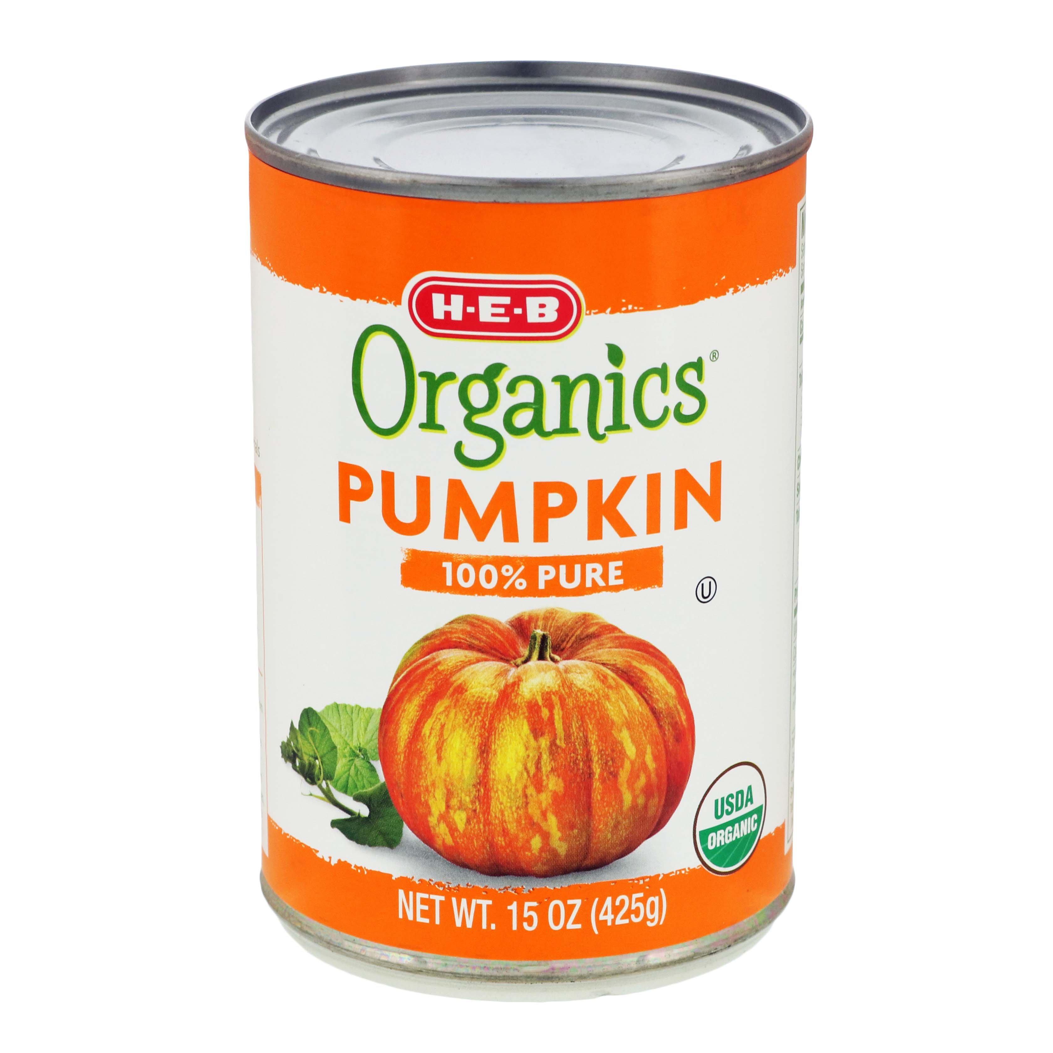 tin pumpkin for dogs
