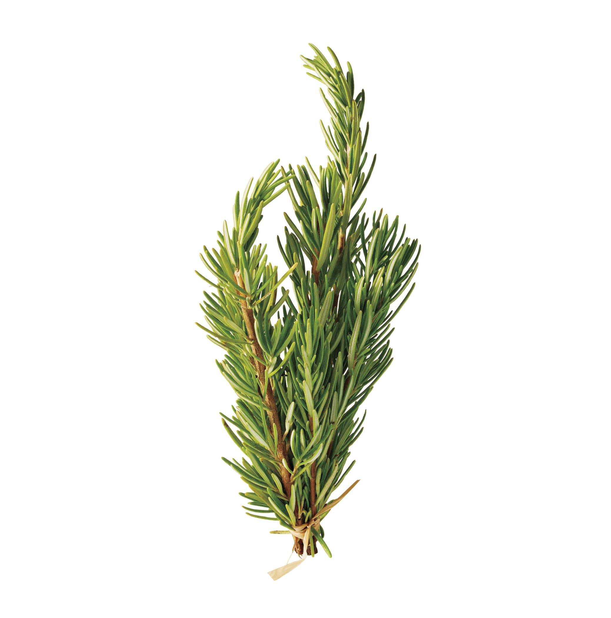 Fresh Rosemary ‑ Shop Herbs & Spices at H‑E‑B
