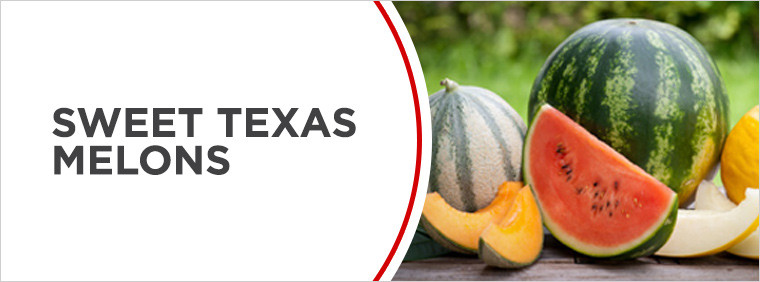 Sweet Texas Melons