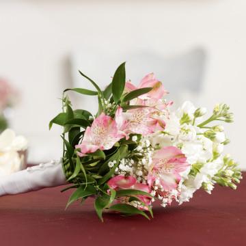 Alstroemeria Flower Girl