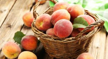 Types of Peaches