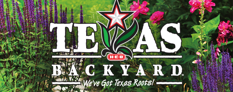 Texas Backyard Gardening