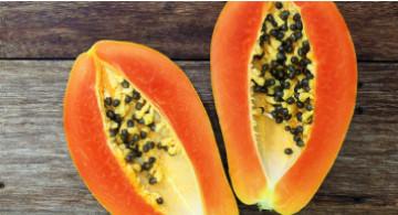 Papaya Guide