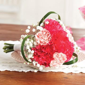 Carnations Flower Girl