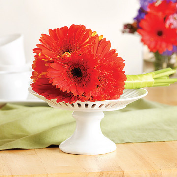 Gerberas Toss Bouquet