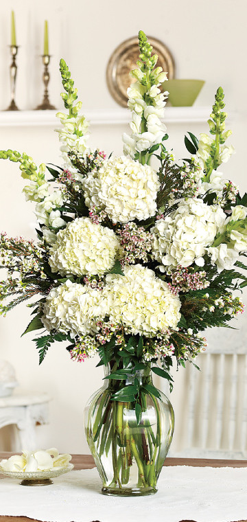 Hydrangea Large Arrangement