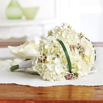 Hydrangea Flower Girl
