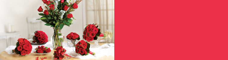 Rose Package Pricing