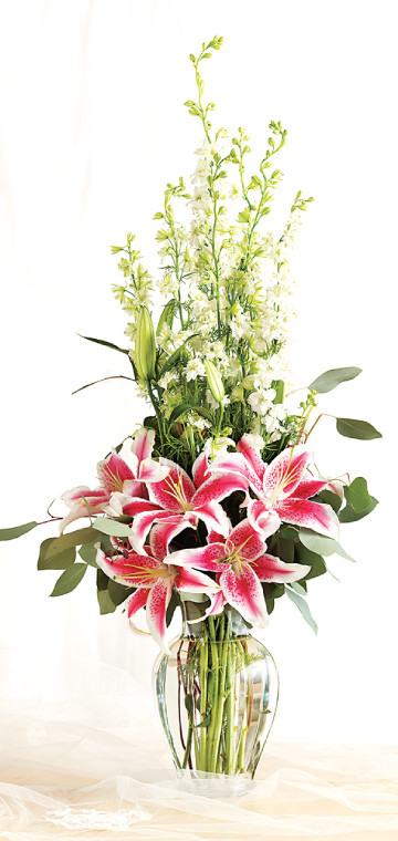 Stargazers Large Arrangement