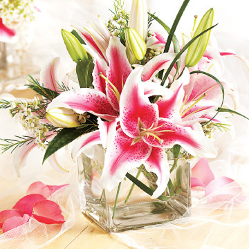 Stargazers Medium Centerpiece