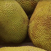 How To Cut and Prepare Jackfruit