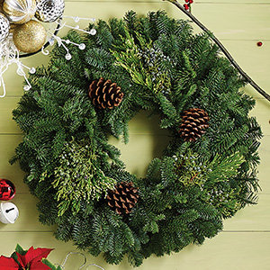 Holiday wreaths and dcor natural elements solutioingenieria Image collections