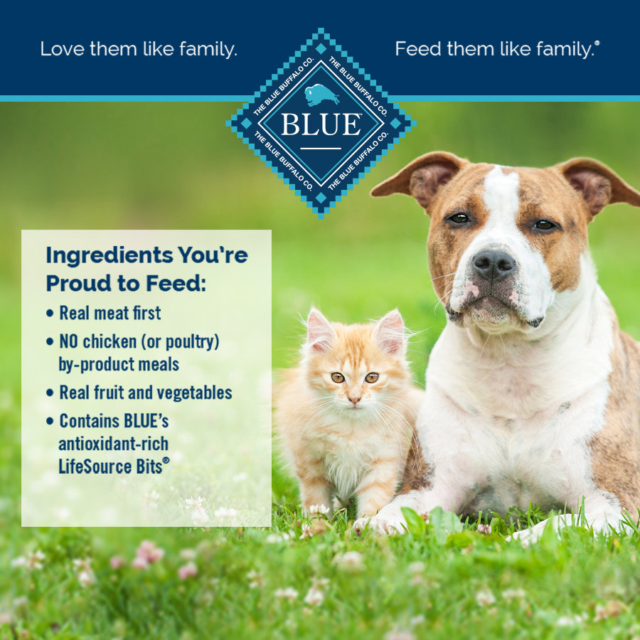 Blue Buffalo Dog Food Cat Food At Heb Shop Hebcom