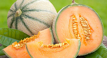 Texas Melons Guide