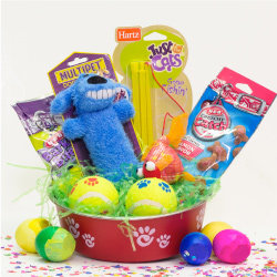 Ideas for homemade easter baskets heb pet easter basket negle Images