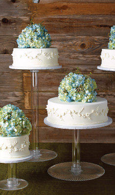 Rustic Bride Wedding Cake Designs - HEB