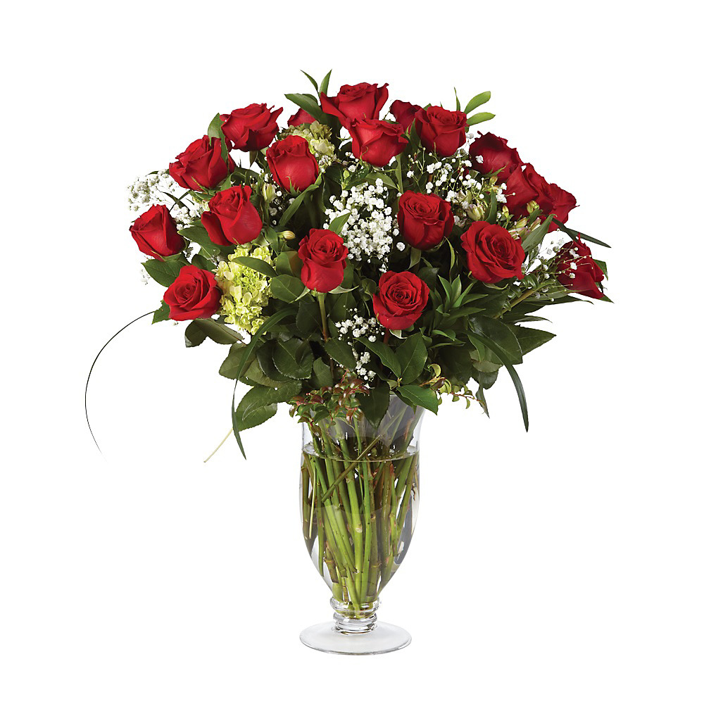 huge discount 2b2c0 e15a7 Double Dozen Rose Elegance
