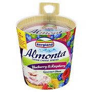 Almonta Blueberry & Raspberry Cream Cheese Spread