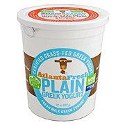 Atlanta Fresh Greek Yogurt Plain