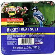 Audubon Park Berry Suet Wild Bird Food