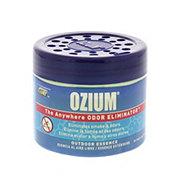 Auto Expressions Ozium Gel Odor Eliminator, Outdoor Essences
