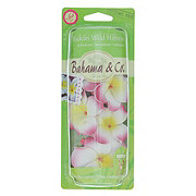 Bahama & Co. Bahama & Co. Scented Necklace, Waikiki Wild Hibiscus