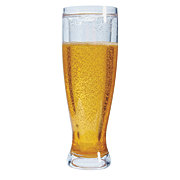 Boston Warehouse Insulated Beer Stein