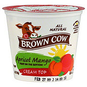 Brown Cow Cream Top Fruit on the Bottom Apricot Mango Yogurt