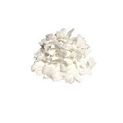 Bulk Coconut Chip Flakes