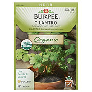 Burpee Cilantro Seeds, Coriander Organic