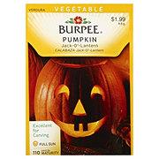 Burpee Pumpkin Seeds, Jack-O'-Lantern