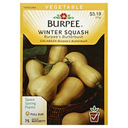 Burpee Winter Squash Seeds, Burpee's Butterbush