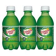 Canada Dry Ginger Ale 10 oz Bottles