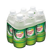Canada Dry Ginger Ale 10 oz Glass Bottles