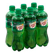 Canada Dry Ginger Ale .5 L Bottles
