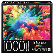 Cardinal Industries Intense Colored Powder Puzzle