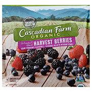 Cascadian Farm Organic Organic Harvest Berries