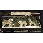 Ceaco Wild Life Wolf Puzzle