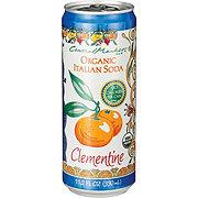 Central Market 90 Calorie Organic Italian Soda Clementine