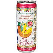 Central Market 90 Calorie Red Grapefruit Organic Italian Soda