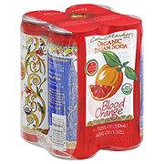 Central Market Organic Blood Orange Italian Soda 11.2 oz Cans