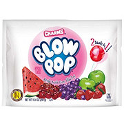 Charms Blow Pops Assorted Bubble Gum Flavor Filled Lollipops