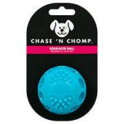 Chase 'N Chomp Squeaker Ball