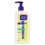 Clean & Clear Foaming Facial Cleanser Sensitive Skin