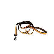 Coastal Pet Products 1 Inch X 6 Feet Orange/Brown/Gray Leash